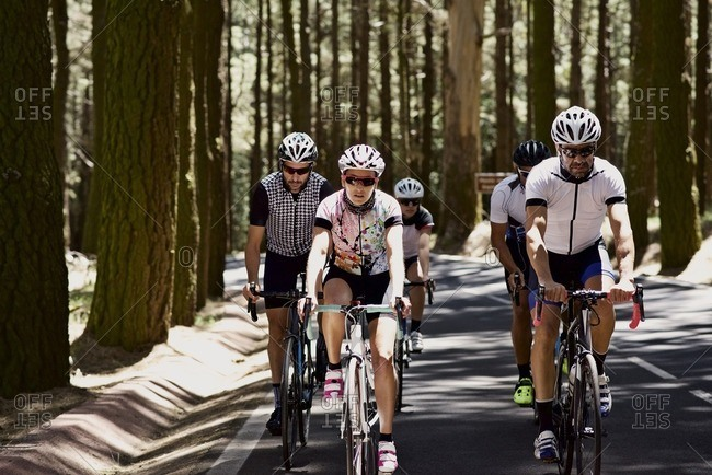 Group of cyclists riding through a forest together