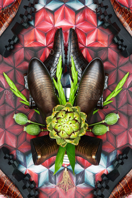 Snakeskin boots and flowers arranged on a graphic background