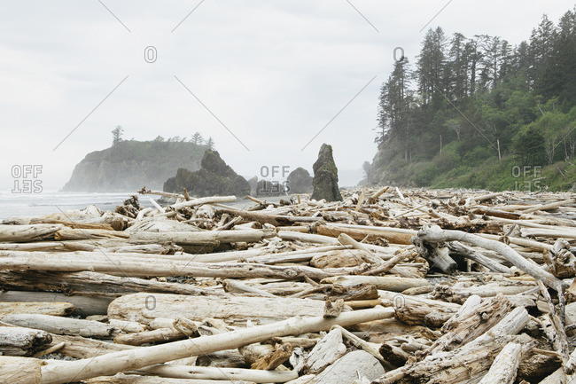 View of coastline and Ruby Beach, piles of driftwood in the foreground