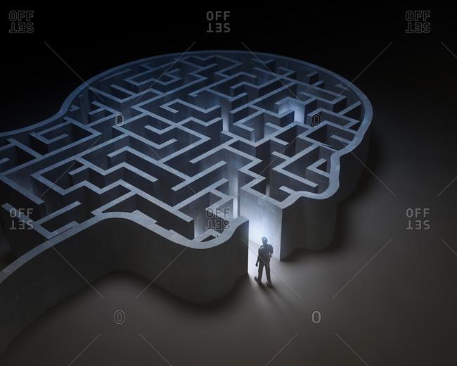 Human head in shape of maze