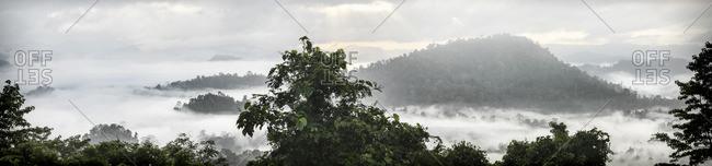 Morning mist settling over a tropical rainforest, Sabah, Borneo, Malaysia