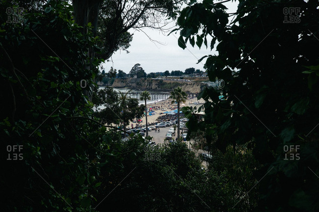 View of the beach in Santa Cruz, California through a clearing in the trees