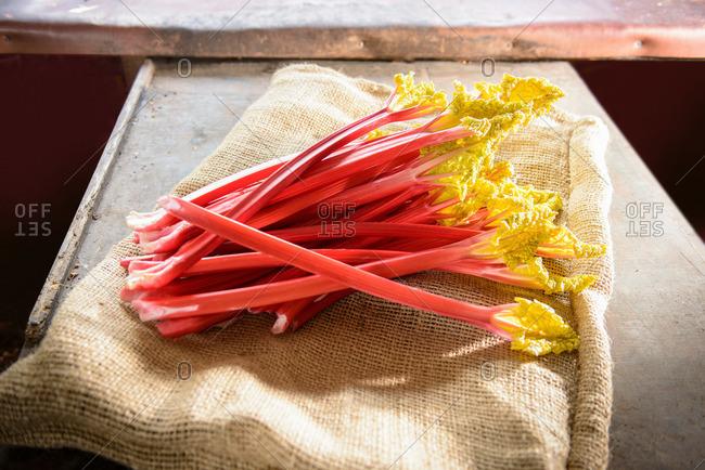 Rhubarb on sack, still life