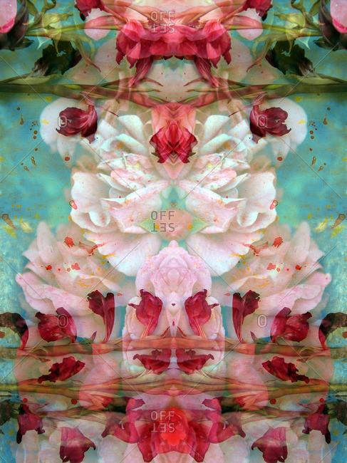 Gladiolas in symmetrical pattern