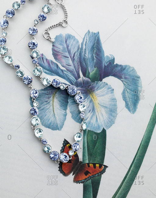 Rhinestone necklace on top of image of flower and butterfly