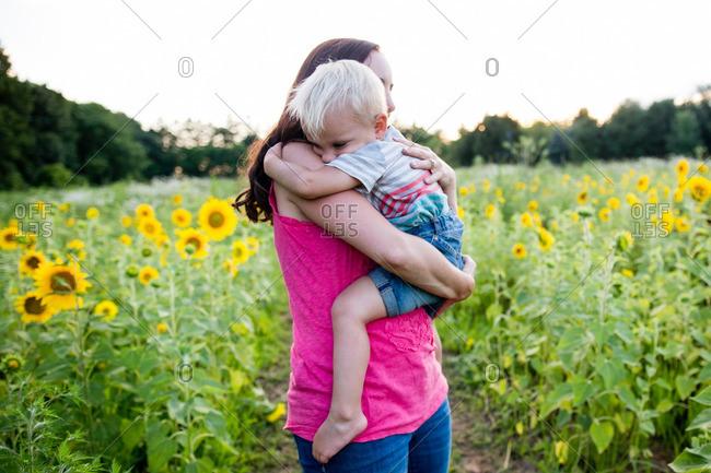 Boy hugging woman among sunflowers
