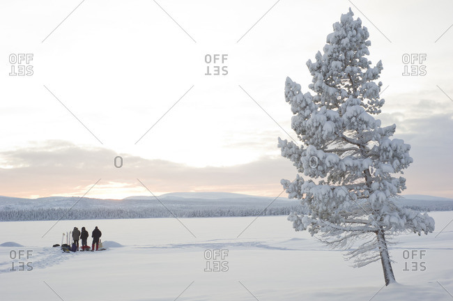Sweden, Lappland, Jokkmokk, Three men in field in winter