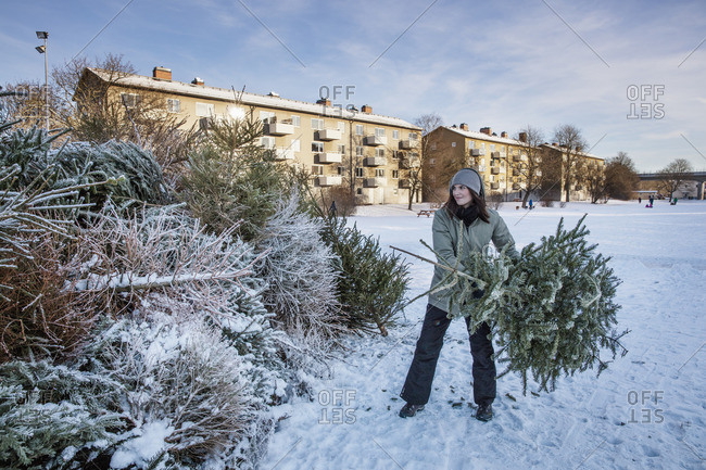 Sweden, Sodermanland, Johanneshov, Nytorps Garde, Young woman throwing out old Christmas tree