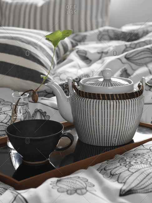 Sweden, Vastergotland, Teapot and cup on tray