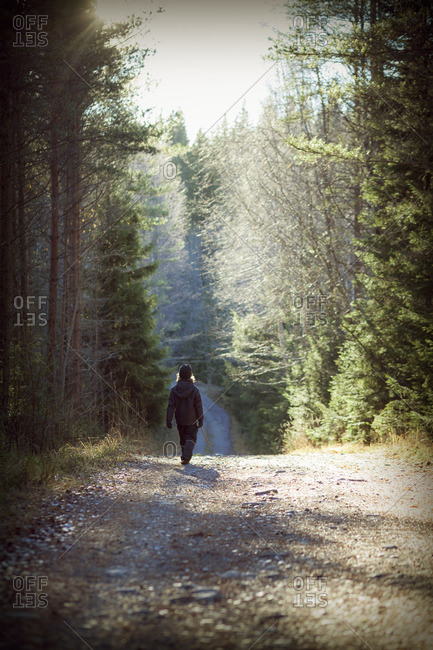 Sweden, Narke, Boy walking in forest