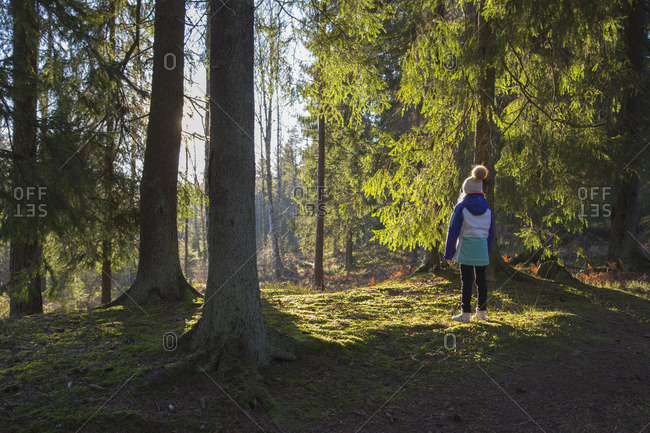Sweden, Smaland, Anderstorp, Girl standing in forest, rear view
