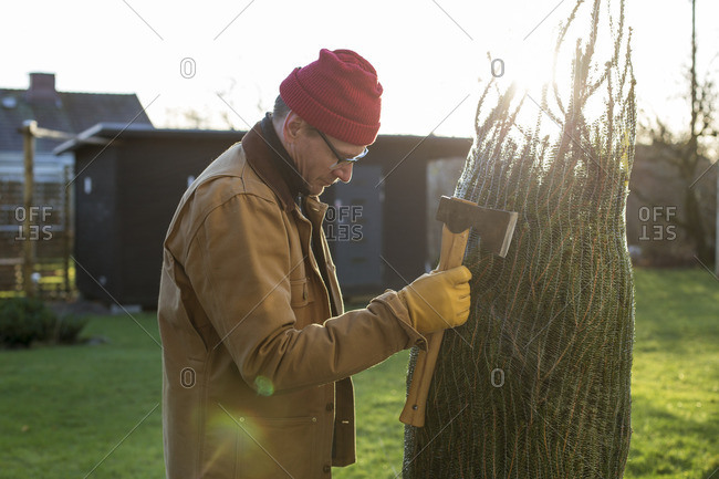 Sweden, Vastergotland, Man with axe looking at christmas tree
