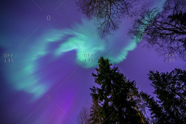 Finland, Pohjois-Pohjanmaa, Oulu, Aurora borealis