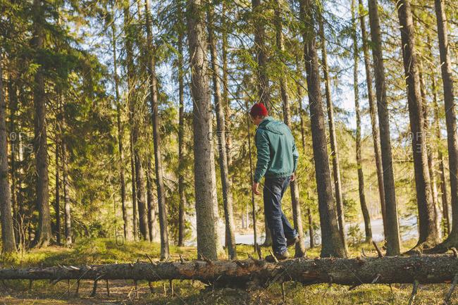 Finland, Esbo, Kvarntrask, Young man walking on trunk of fallen tree in forest