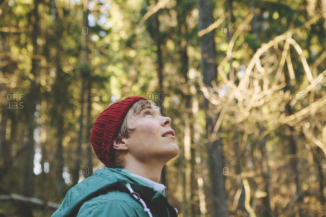 Finland, Esbo, Kvarntrask, Portrait of young man in forest, looking up