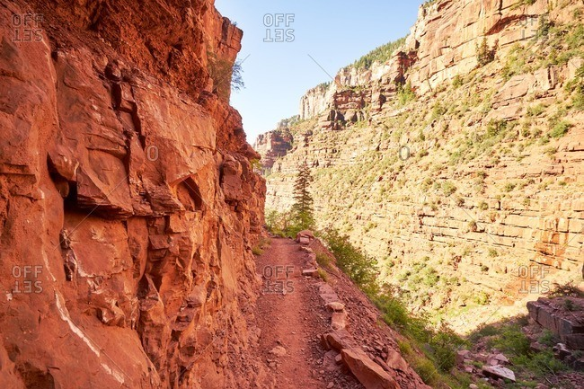 A trail through Grand Canyon