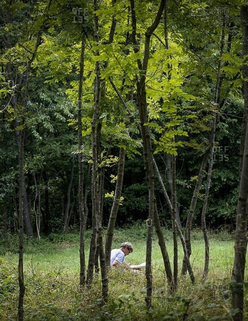 Man Carving Wood in Wooded Field