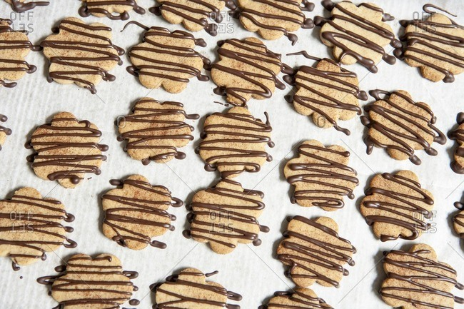 Graham Cracker Cookies Drizzled with Chocolate