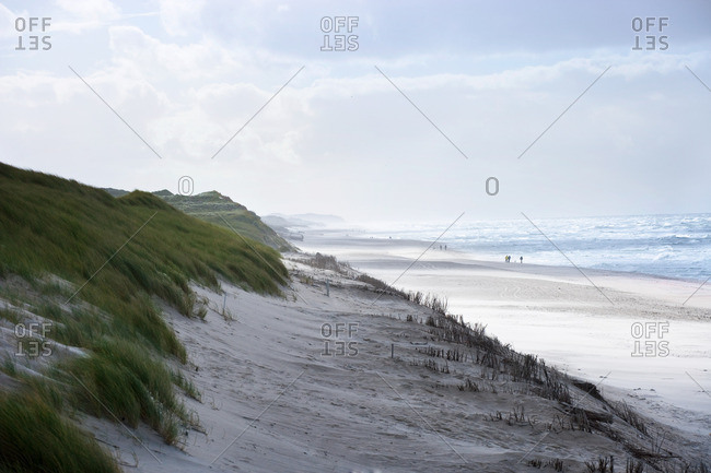 Sand dunes and beach of Sylt, Schleswig-Holstein, Germany