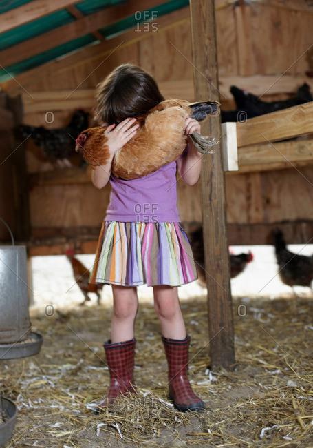 Girl holding hen in hen house