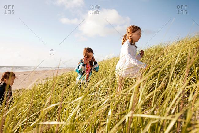 Girls walking through long grass at beach