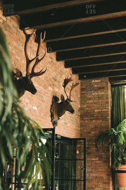 Deer hunting trophies on brick wall of rustic restaurant