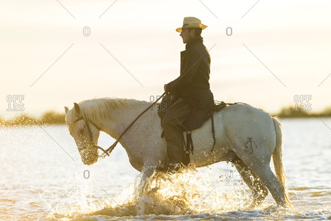 5/26/15: Guardian on his Camargue horse in water, France