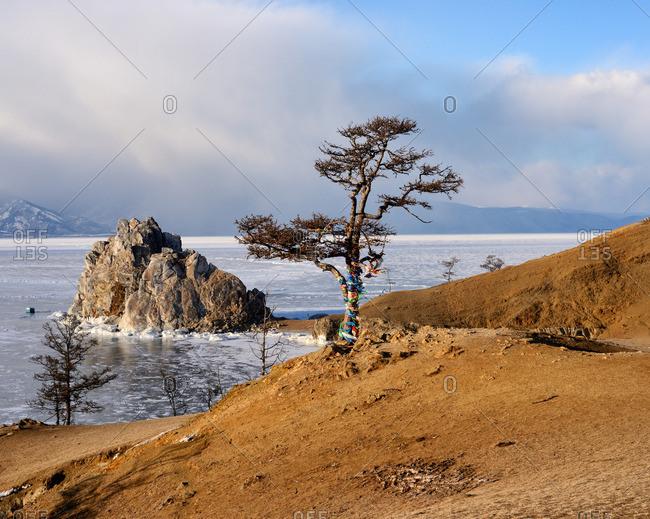 View of tree and Shamanka Rock on Burkhan Cape, Baikal Lake, Olkhon Island, Siberia, Russia