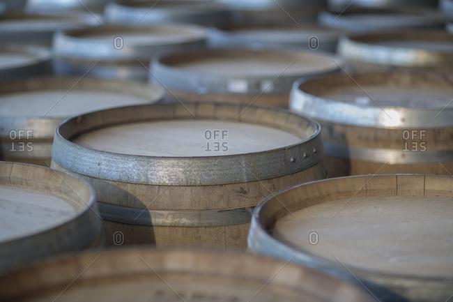 Wine barrels in cooperage - Offset
