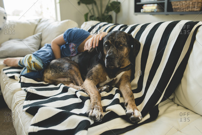 Girl napping on couch with dog