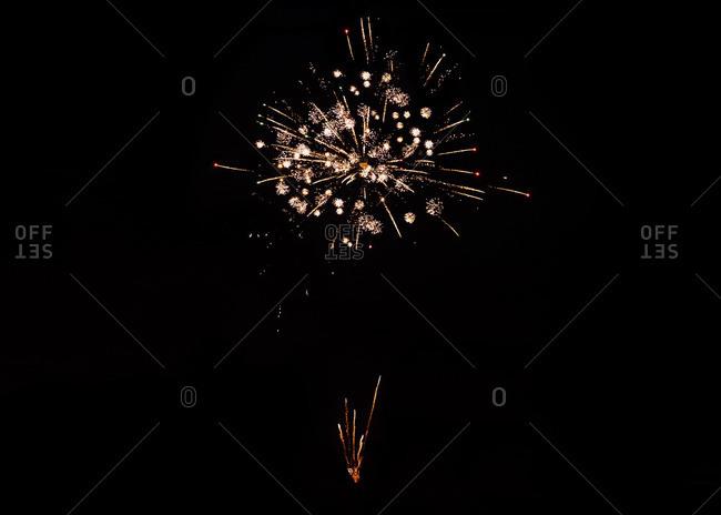 Fireworks bursting in night sky