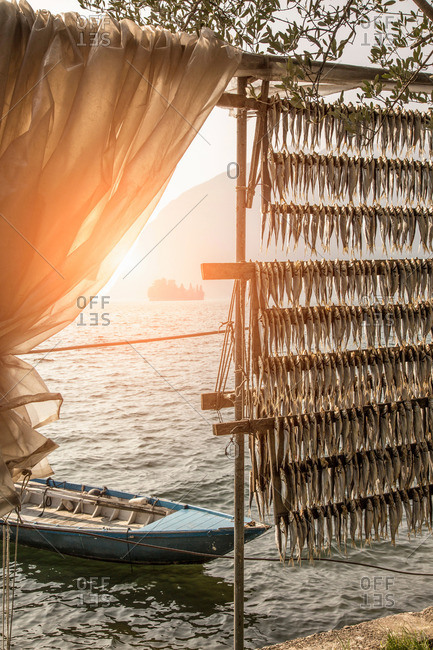 Fish drying by Lake Iseo in the evening