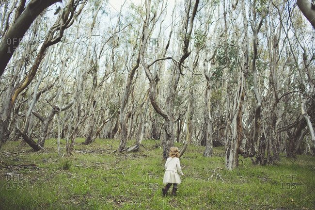 Young girl wandering in the woods alone