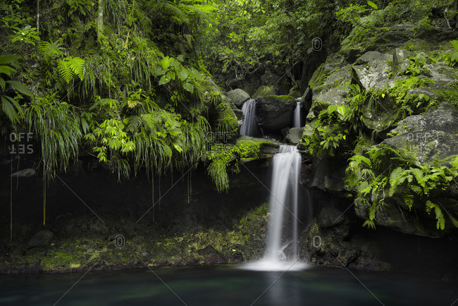 Waterfall in a rainforest