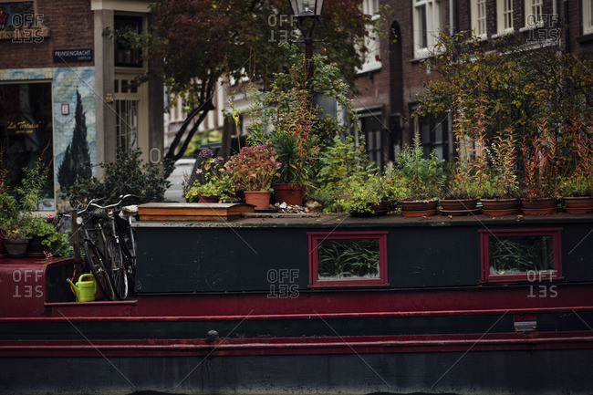 Plants on a boat in Amsterdam