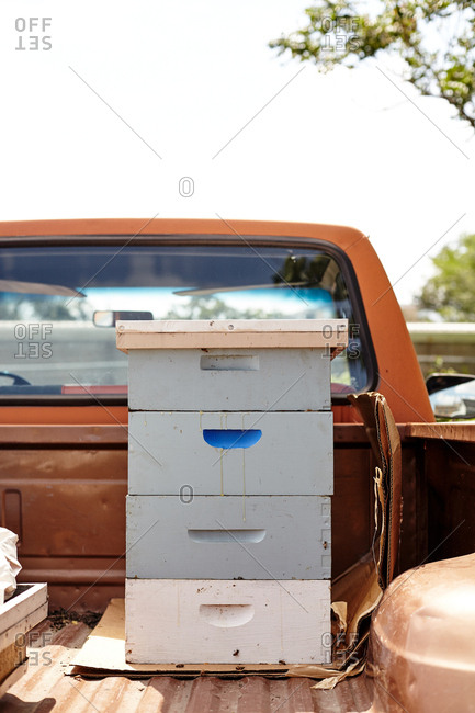 Bee hives in back of truck