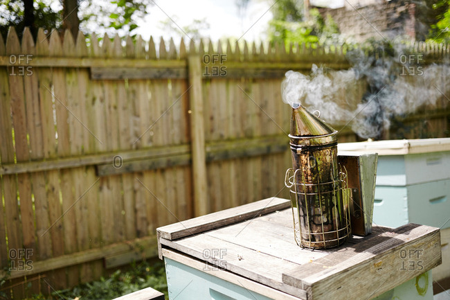 Bee smoker on hives