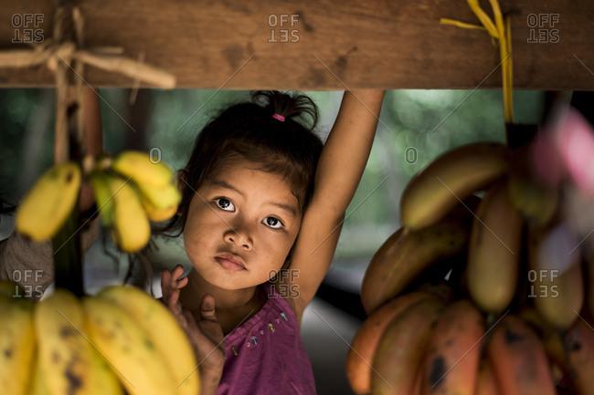 Phnum Kulen, Cambodia - August 21, 2014: Toddler girl between bundles of bananas