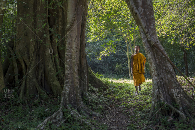 Siem Reap, Cambodia  - August 22, 2014: Buddhist monk walking through trees by the Preah Palilay temple