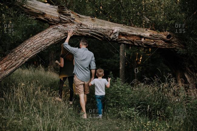 Family walking under a falling tree