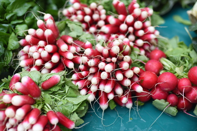 French breakfast radish on an outdoor table