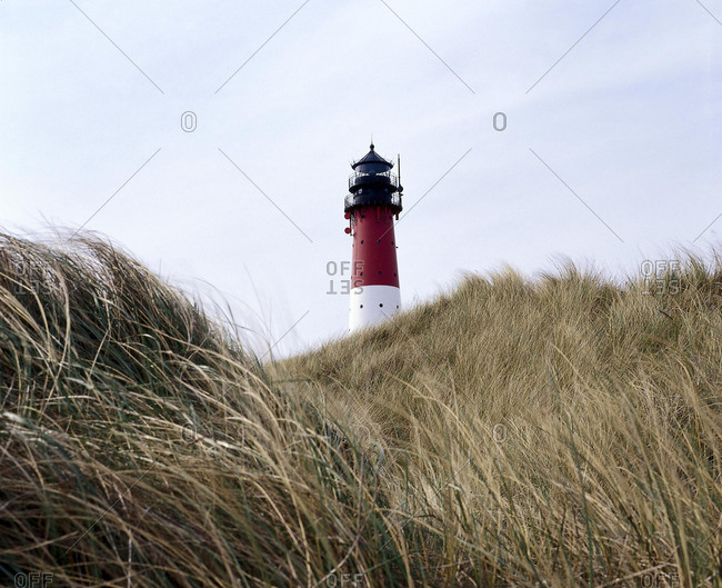 View of a lighthouse through tall grass on the island of Sylt, in the North Frisia district of Schleswig-Holstein, Germany