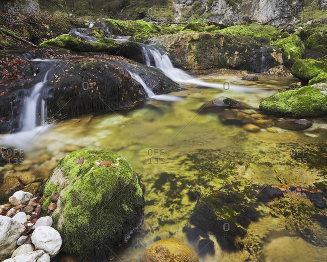 Babbling brook in Bavaria, Germany
