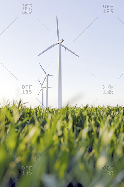 Schleswig-Holstein, Germany - June 15, 2010: Low angle view of a wind farm