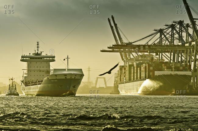 Hamburg, Germany - January 15, 2012: Ships arriving into Tollerort