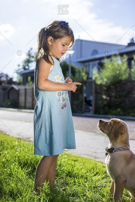 Young girl training her puppy