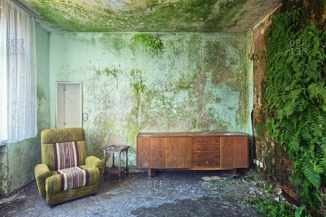 Room with furniture in an abandoned building slowly being reclaimed by nature