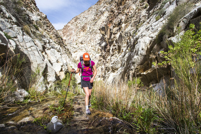 A young woman hikes up a narrow, white canyon, walking through a thin stream with a hiking pole