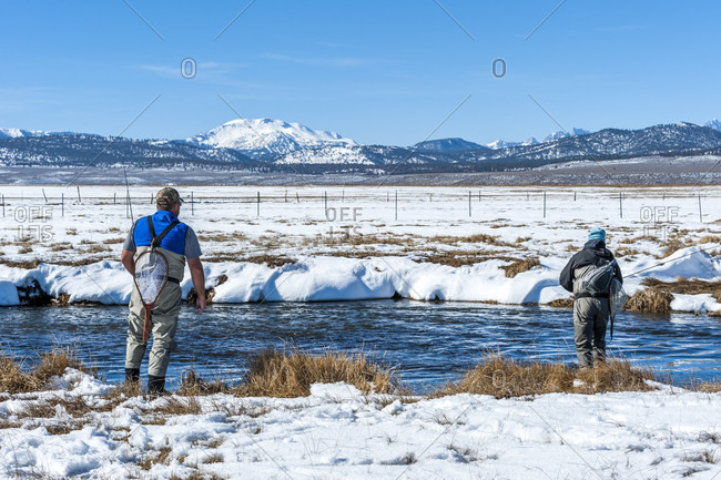 Hunting for Trout on the Upper Owens River