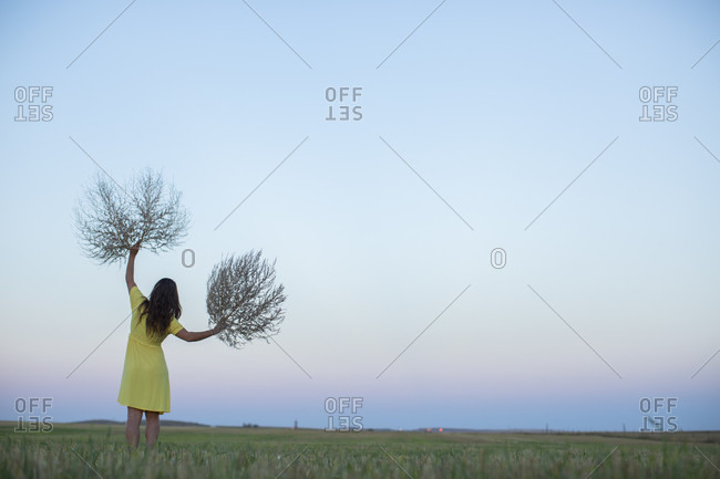 Woman in the North Dakota plains playing with tumbleweeds just before sunrise